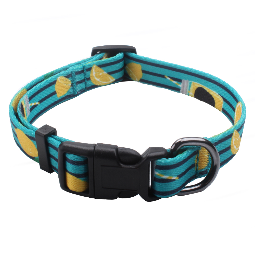 Customized Puppy Collars, Printed Dog Collars, Small Collars Supplies | qqpets