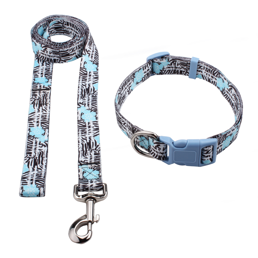 Custom Puppy Collars Leashes, Factory Wholesale Collars Leashes | qqpets