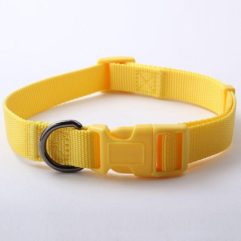 Dog Training Collars Wholesale: Promotion Nylon Dog Training Collars-QQpets
