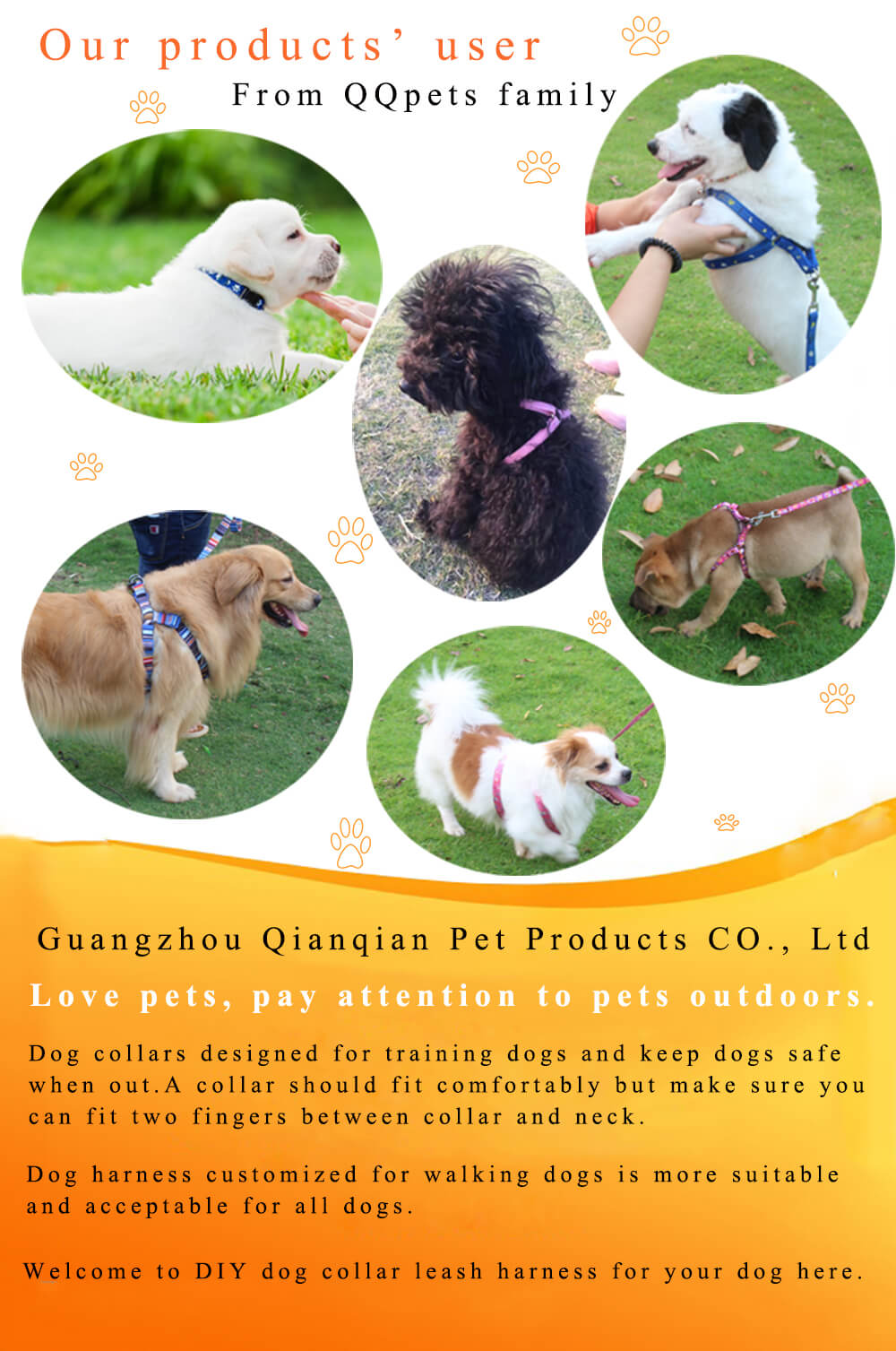 dog collars leashes harness supplier