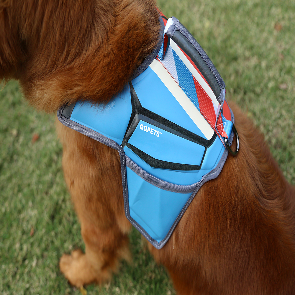 World Cup massage dog harness: beautiful and durable-QQPETS