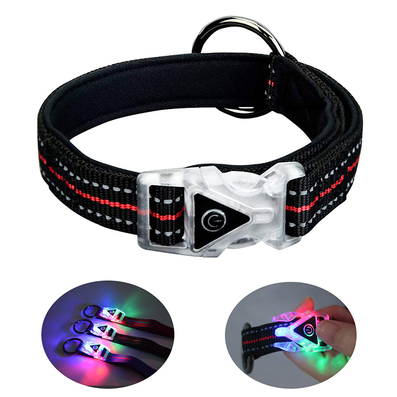 QQPETS LED Dog Collar Glow Lights for Night Safty Walking Personalized Waterproof Flashing Light up Reflective Basic Collars for Small Medium Large Dogs