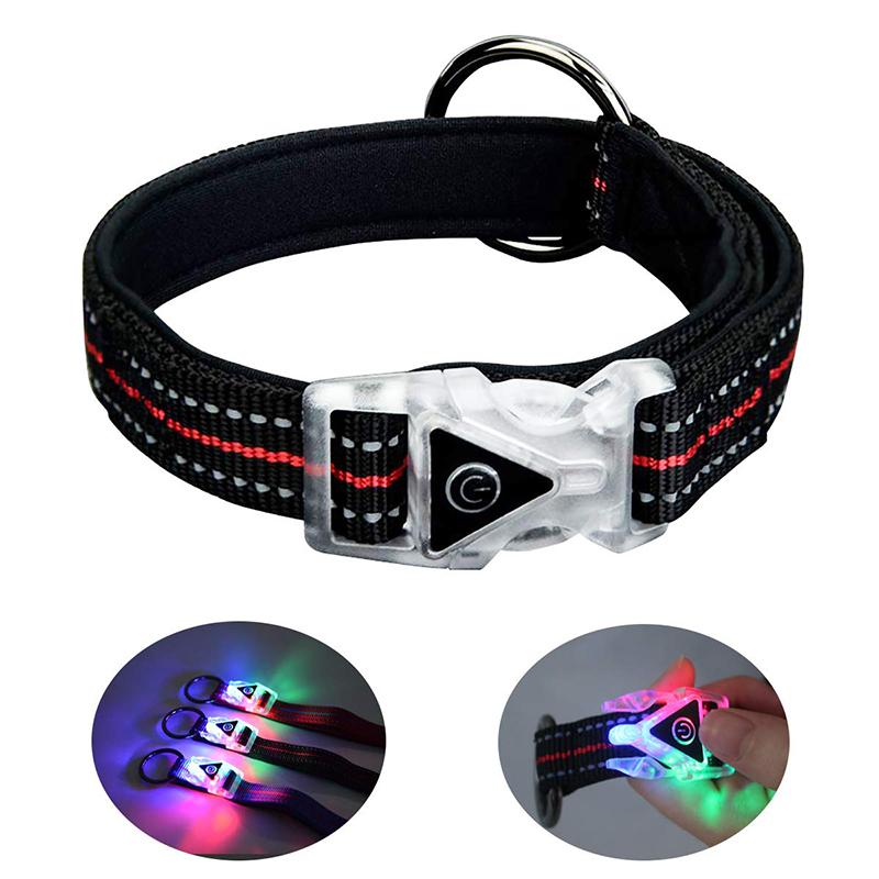 QQPETS LED Collare per cani Luci incandescenti per la notte Camminata sicura Personalizzato Impermeabile Lampeggiante Light Up Collari riflettenti di base per cani di taglia piccola di taglia media