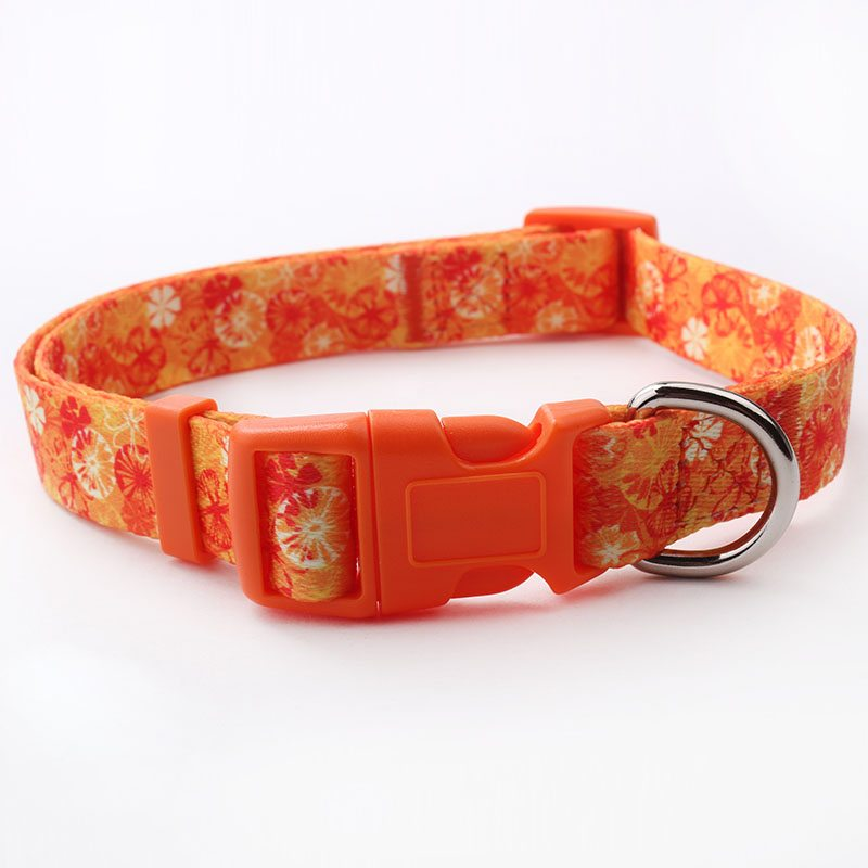 Orange dog collars: Factory direct polyester dog collar with orange print