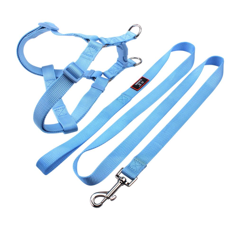 best dog harness & leash